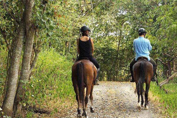 9 Neden - Atlar İle Safariye Çıkın