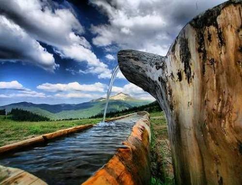 Bahar Rotası için En Güzel Alternatif: Oksijen Deposu Daday
