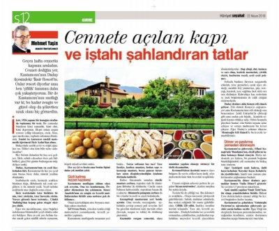 Mehmet Yaşin Hürriyet Seyahat
