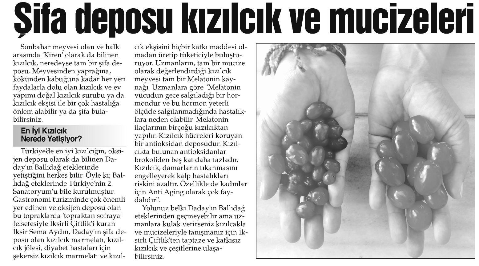 İstanbul Gazetesi - 23 Şubat 2016