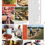 Sofra Dergisi - Ekim 2015