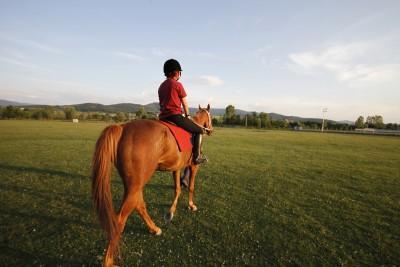 Ankara'ya Yakın At Binicilik Merkezleri
