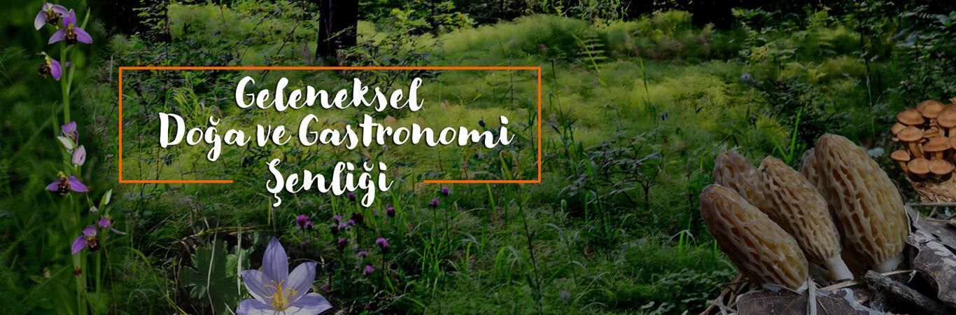 Kastamonu Doğa ve Gastronomi Şenliği İksir Resort Town