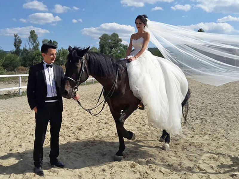 Düğün ve Binicilik