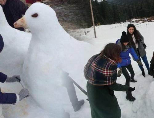 İksir Kardan Heykeller Şenliği – Ocak Ayı