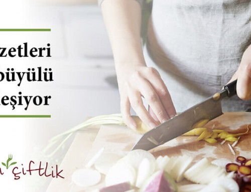 İksirli Çiftlik Four Seasons Hotel'de