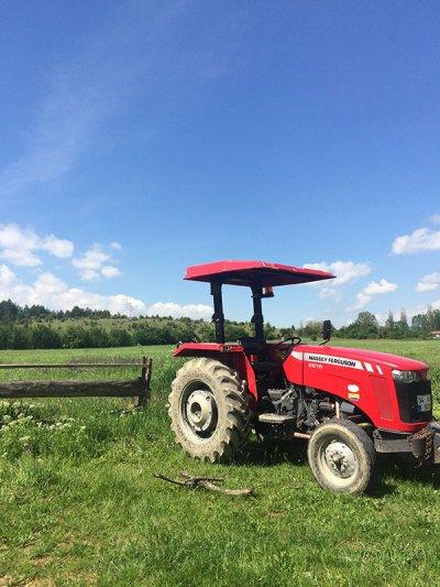 İksirli Çiftlik Konaklama