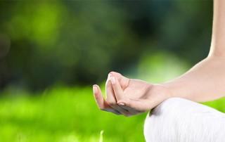 İksirli Çiftlik'te Yoga Tatili