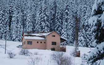 Kastamonu Dağ Evi İksir