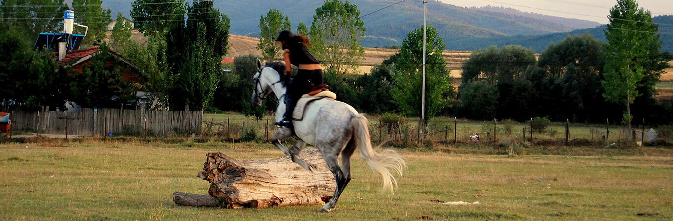 Kastamonu At Biniciliği ve Konaklama İmkanları