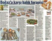 Basında İksir Resort Town Kastamonu Oteli Taraf Reha Tartıcı 19 - 04